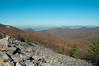 Wilderness area of Shenandoah National Park