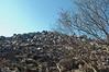 Looking up to top of Blackrock Mtn.