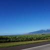Day 3 - Mt Haleakala and Jaws (10)