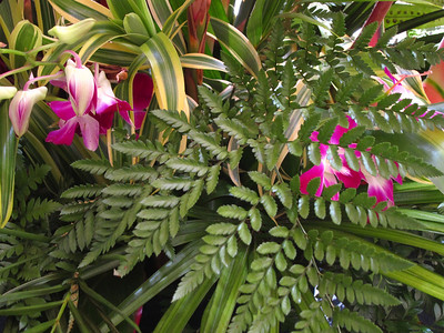Maui Day Trip 10-2