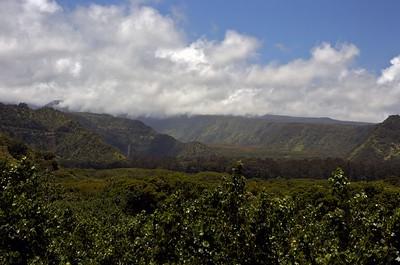 Maui day 2
