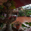View of the rainy courtyard from our breakfast table in the restaurant