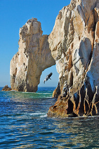 The famous arch at Cabo San Lucas.  The bird was a lucky coincidence.