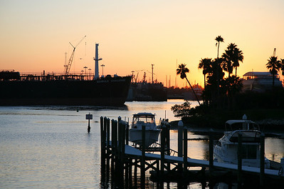 Gorgeous Tampa Fl.  sunrise.......