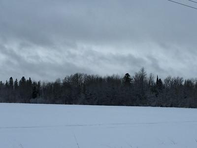 Fields and Woods Scenery @ Sax-Zim Bog [Zim Road]