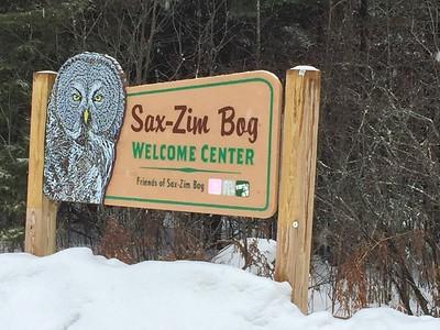 Visitor Center @ Sax-Zim Bog [Owl Avenue]