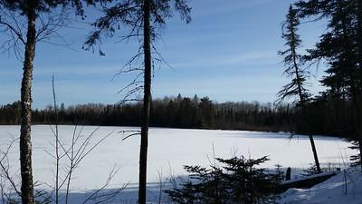 Bird Lake