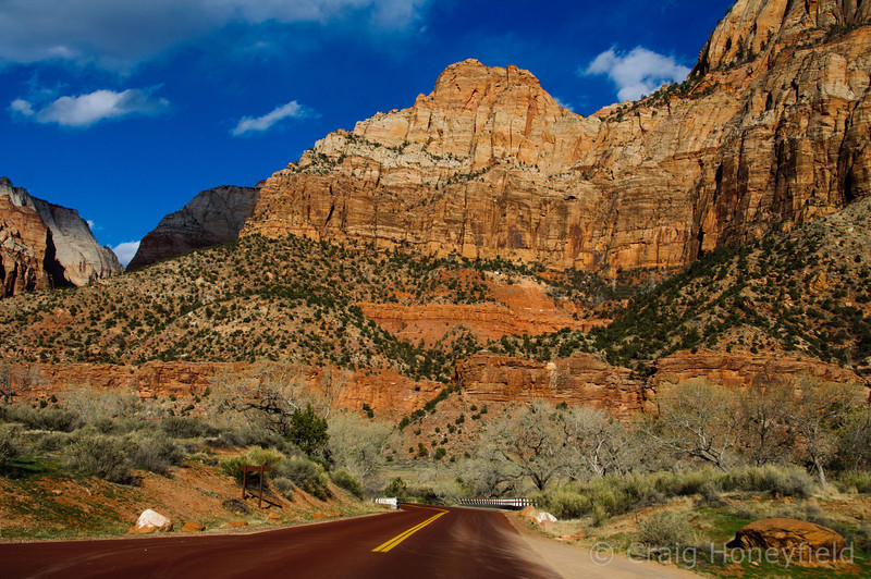 Amazing Drive into Zion.  Even the roads are red!