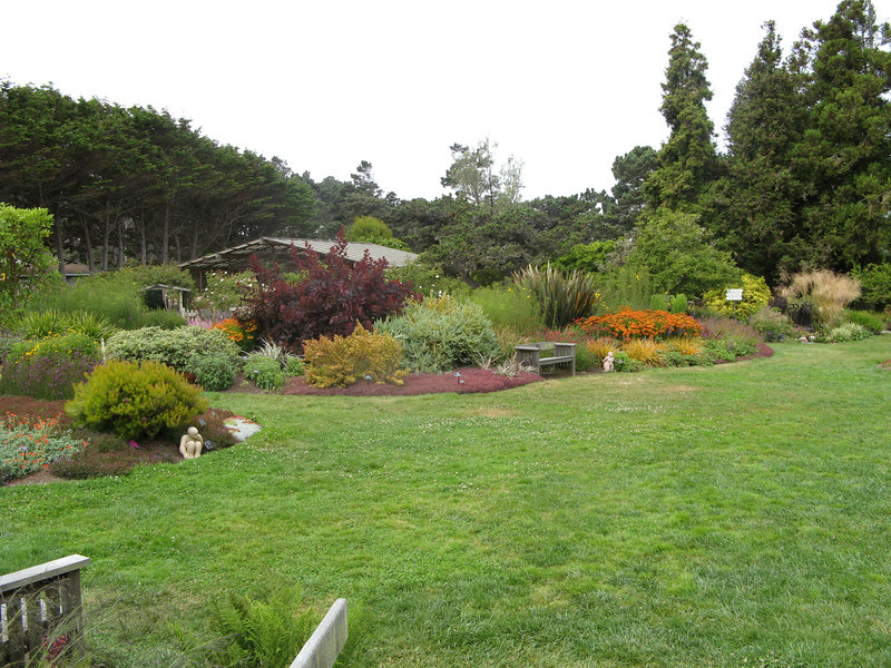 We toured the Mendocino Coast Botanical Garden in Fort Bragg.