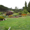 We toured the Mendocino Coast Botanical Garden in Fort Bragg.