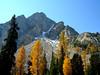 Warren Mountain and tamaracks