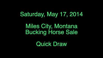 Bucking Horse Sale - Quick Draw