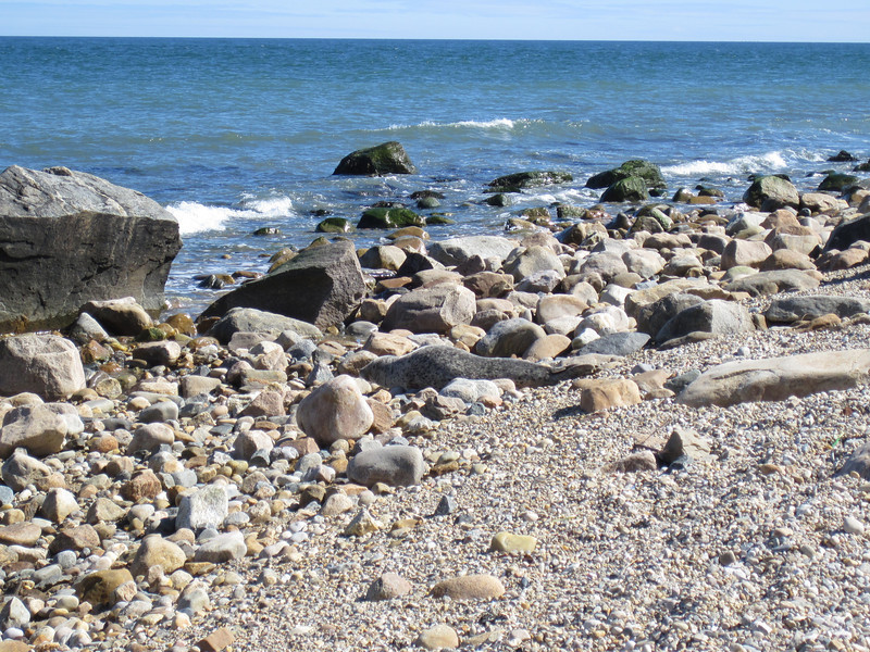 A trip with Mom to Montauk, NY. Find the seal.