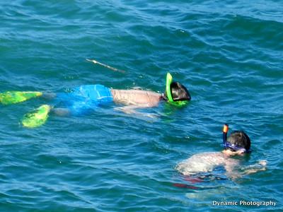 Montego Bay Jamaica 2011/2012