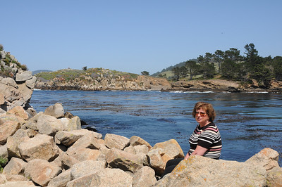 Whalers Cove at Point Lobos