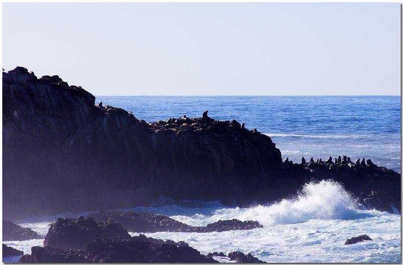 2005 Monterey Trip (Coast Line) - 009