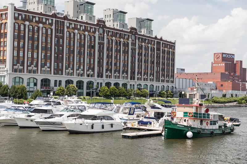 The downtown marina.