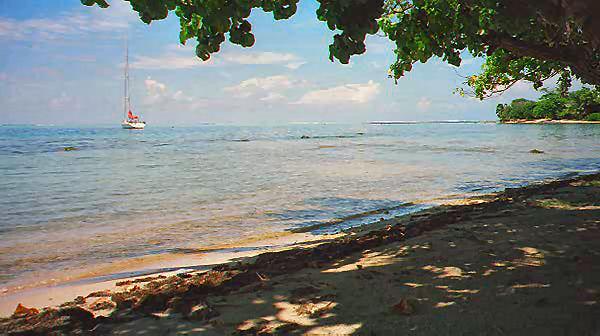 Moorea Tahiti Oct.1998