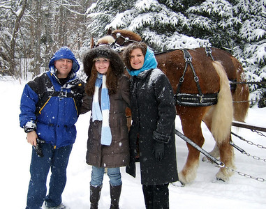 a wonderful sleigh ride in a snowstorm... just fanstastic