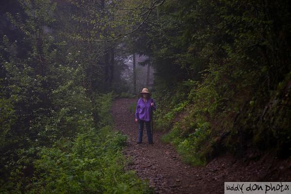 Mt. Le Conte Hike 2009