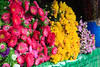 Flowers at Kalaw market