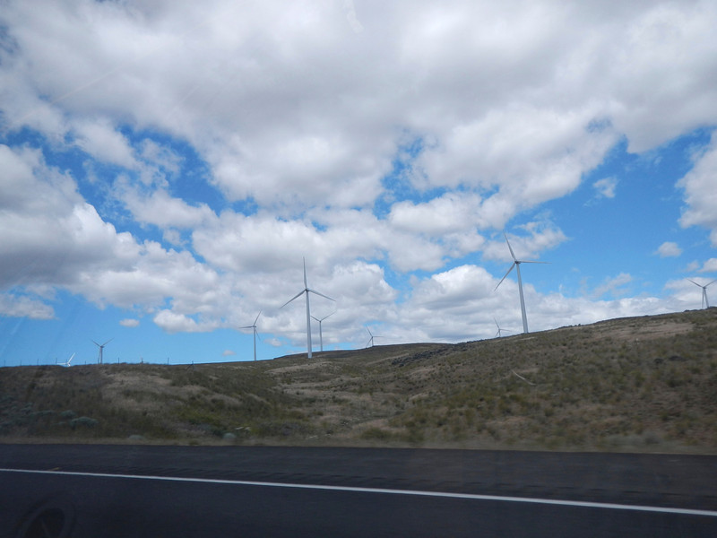 Right after crossing the Columbia, a group of wind generators at the highest point in the area.
