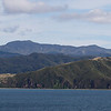 At Akaroa, we took a harbor cruise.  Afterwards I hiked in the nearby woods for a while.