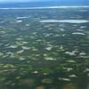 Glaciated landscape near Fort Simpson