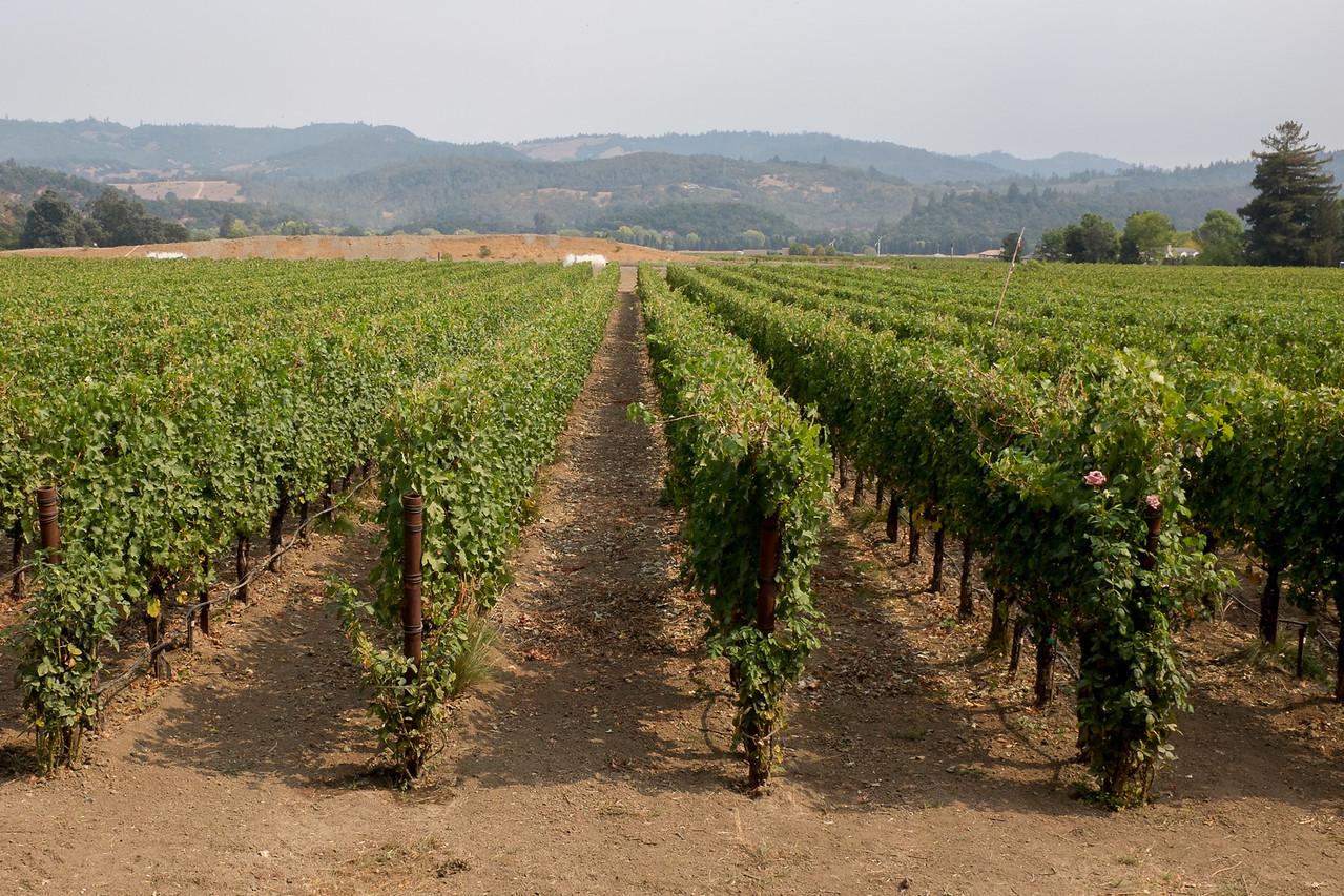 Heitz Wine Cellars