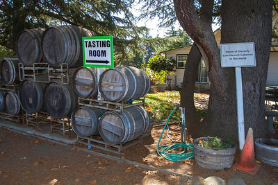 You park out front next to the vines and walk in to the tasting room nearby.