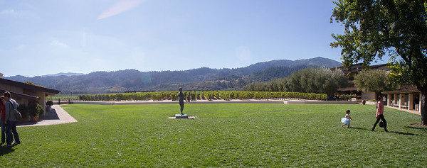 The standard and reserved tasting rooms have a wonderful view of the Napa Valley.