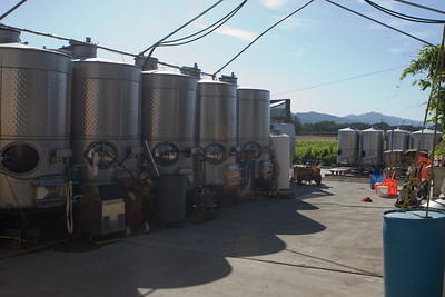 The fermentation tanks and press were next to the tasting room.