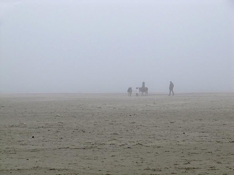 Ezeltje in de Sahara of toch Terschelling..