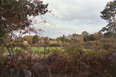 farm view