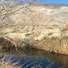 Owens River near Eastern Sierra Interagency Visitor Center