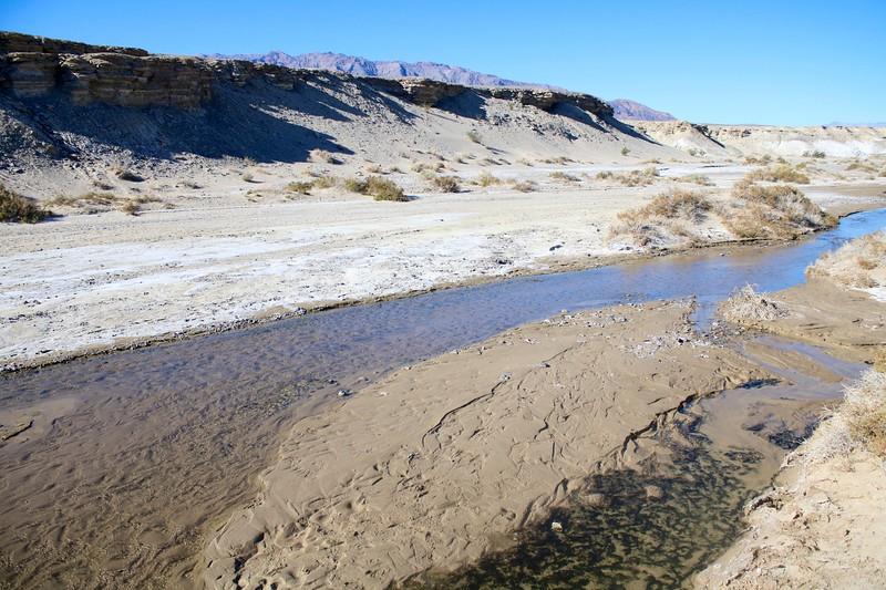 Salt Creek Interpretive Trail @ Death Valley NP