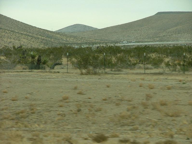 Las Vegas Scenery 1-1-06-002