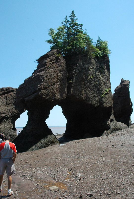 """Hopewell Rocks-Home of the """"Flower pot Rocks""""<br /> Twice a day these rocks are carved out with high tides.  The tides range from 25 feet to 50 feet when the moon is aligned properly."""