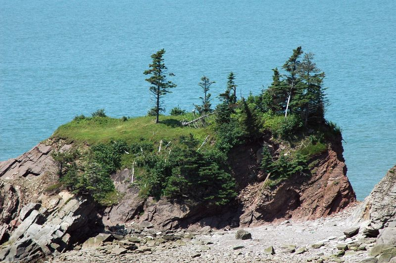 View from Cape Enrage lighthouse