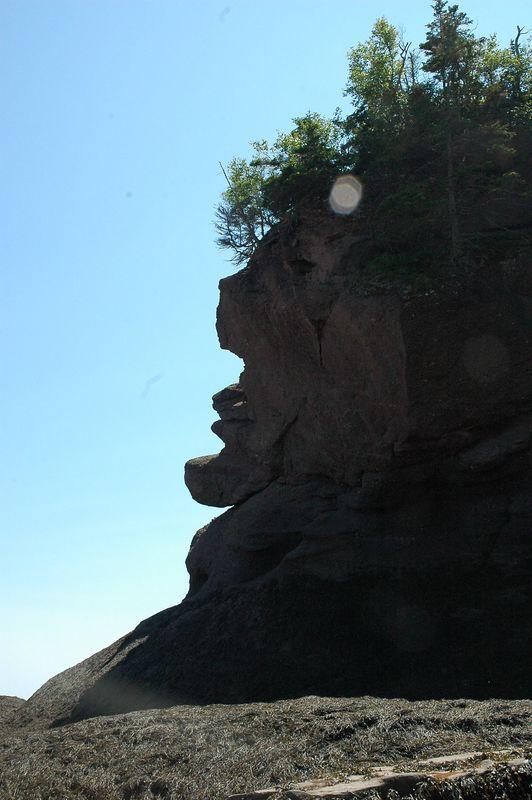 Hopewell Rocks - A mans face