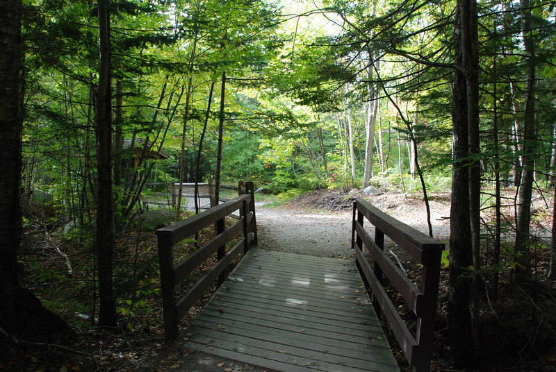 Trail down to the bridge.