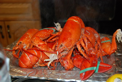 Lobster's ready!
