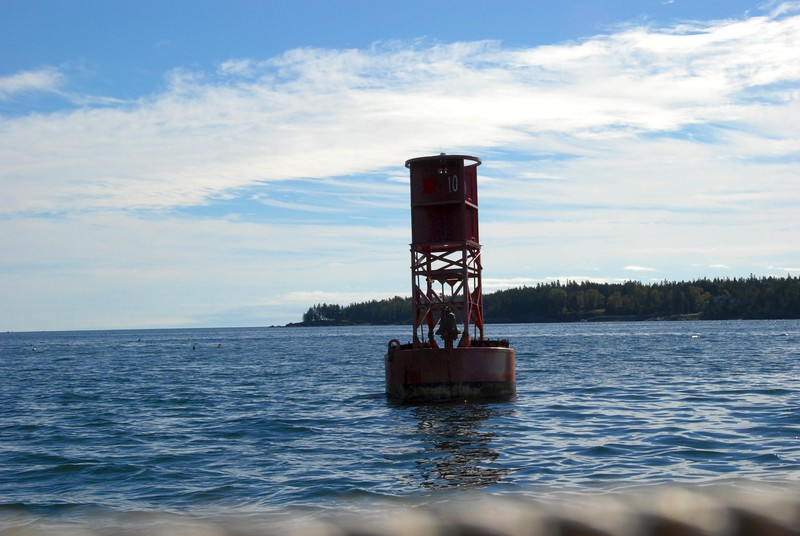 Buoy in the harbor.