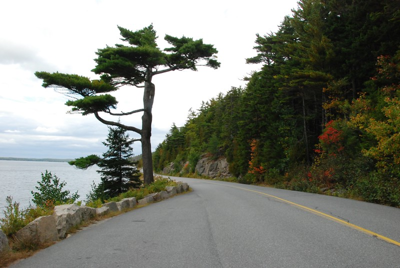 Driving back to Laura's via Somes Sound.