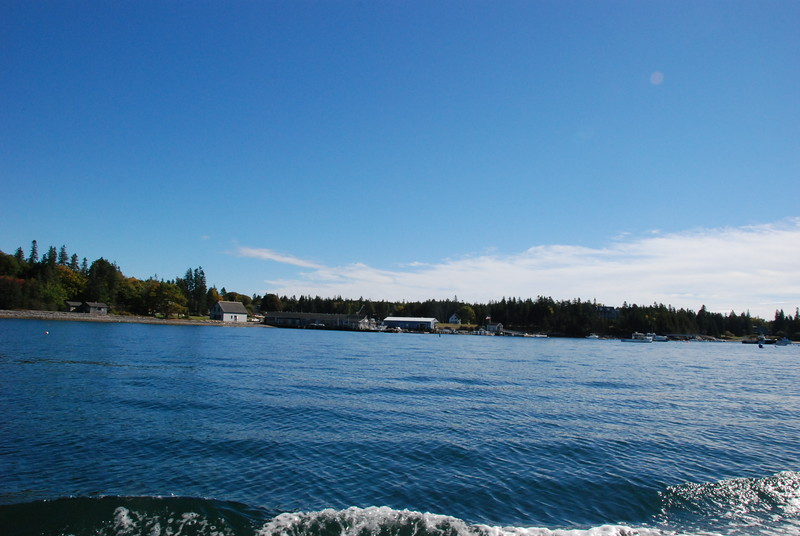 Approaching Isleford, Little Cranberry Island. See that little black house on the left? That's worth more than $1 million.