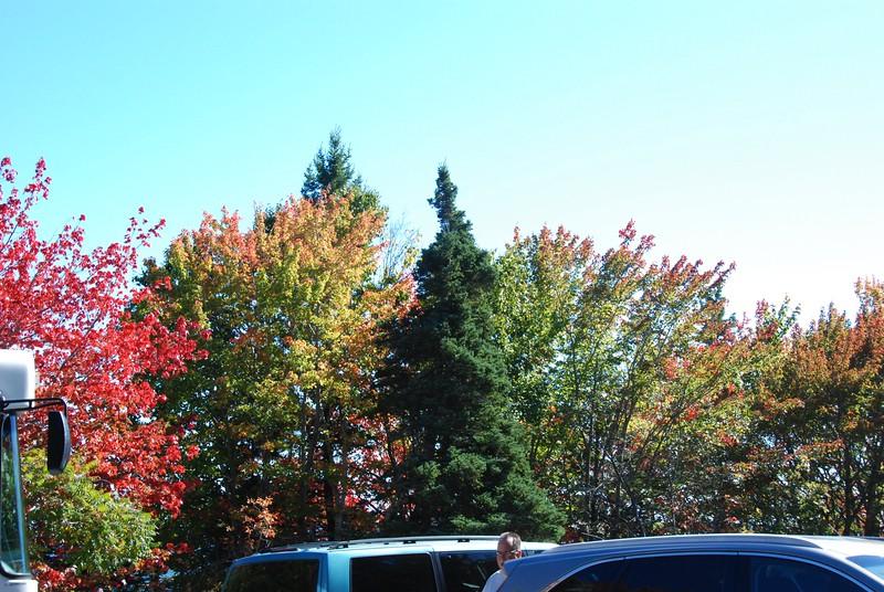 Fall colors at Thunder Hole.