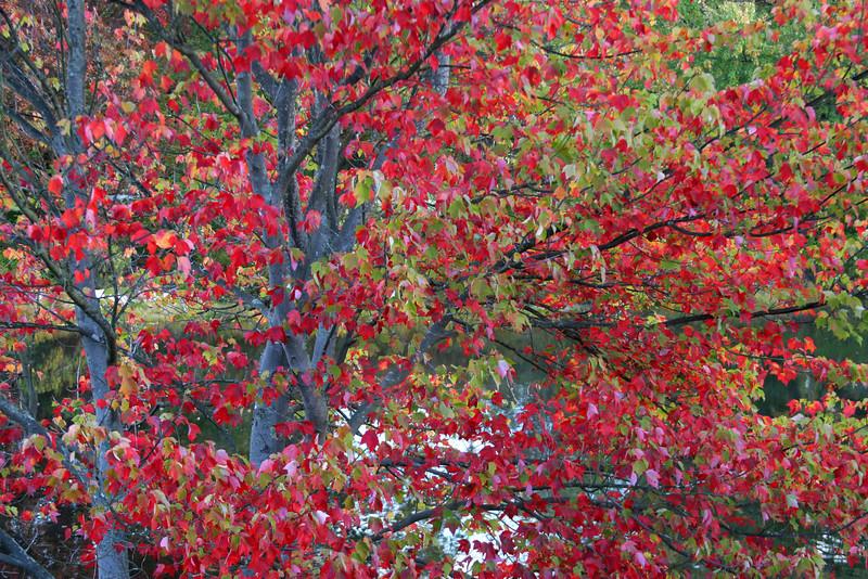 Deering, New Hampshire