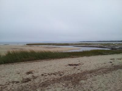 End of Nature Trail @ Wellfleet Bay WS
