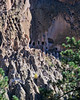 Ruins and Cave Dwellings at Bandelier National Monument