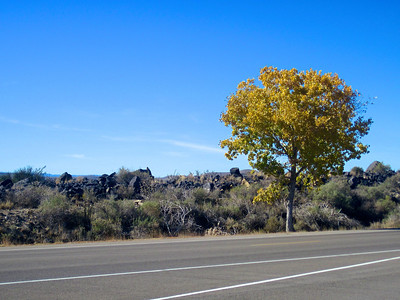 On the way from Lincoln, NM to the Bosque del Apache.